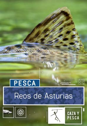 Reos de Asturias