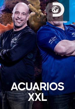 Acuarios XXL