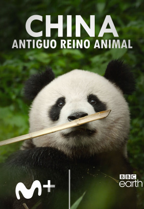 China: antiguo reino animal