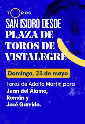 Toros de Adolfo Martín para Juan del Álamo, Román y José Garrido (23/05/2021)