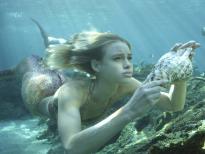 Las Sirenas De Mako (T1) - Ep.17 El otro Anillo lunar