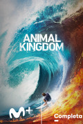 Animal Kingdom | 4temporadas