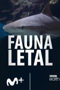 Fauna letal | 1temporada