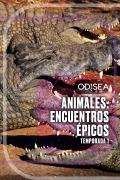 Animales: encuentros épicos | 1temporada