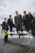 Ley y orden: acción criminal | 2temporadas