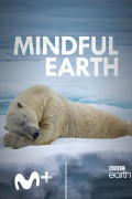 Mindful Earth | 1temporada