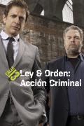 Ley y orden: acción criminal | 3temporadas