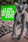 La vida secreta del Zoo   4temporadas