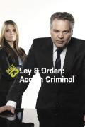 Ley y orden: acción criminal | 1temporada