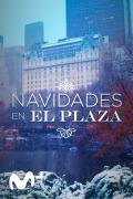 Navidades en el Plaza