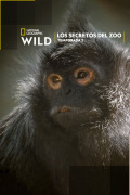 Los secretos del zoo | 1temporada