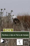 Perdices a rabo en Tierra de Campos