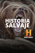 Historia Salvaje | 1temporada