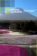 Especial Japón: entre el cielo y la tierra