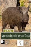 Monteando en la Serra d'Ossa