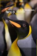 Los secretos del zoo: Pingüinos
