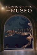 La vida secreta del museo   1temporada