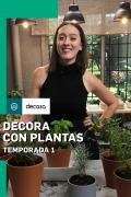 Decora con plantas | 1temporada