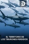 El territorio de los tiburones perdidos
