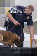 Control de aeropuertos: USA | 1temporada