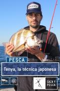 Tenya, una técnica japonesa