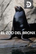 El zoo del Bronx | 1temporada