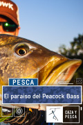 El paraísodel Peacock Bass