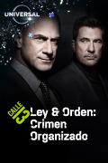 Ley y Orden: crimen organizado | 1temporada